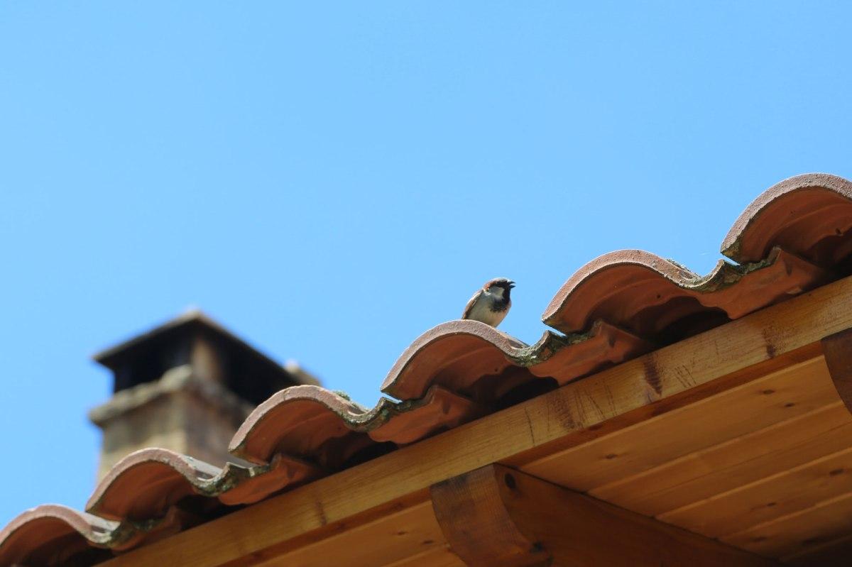 Chambres d'hôte accueillante en pleine nature, entre Lot et Dordogne