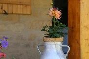 Chambres d'hôte accueillante entre Lot et Dordogne ©Serge Briez